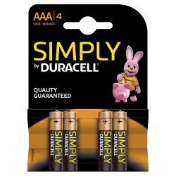 Batteria Duracell AA a Simply